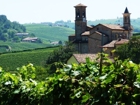 Vineyards from Brezza overlooking Barolo