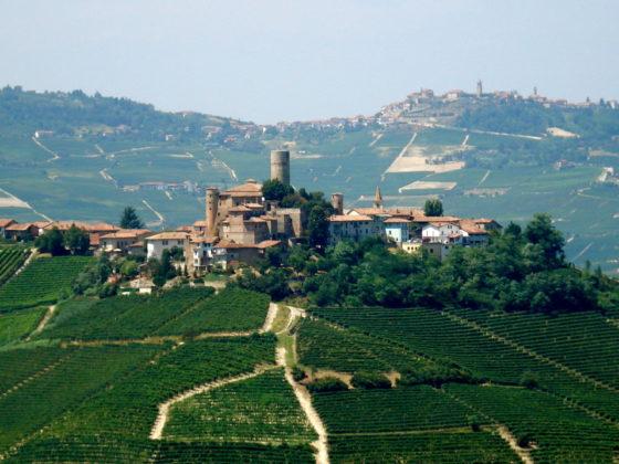 The Langhe, Piemonte