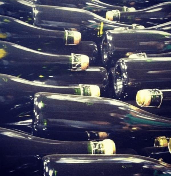 wine tasting in england west sussex bolney estate champagne bottles