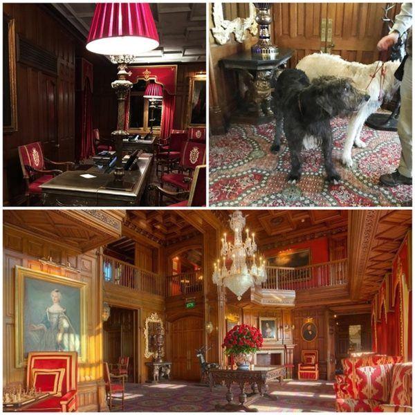 ashford castle luxury hotel ireland interiors