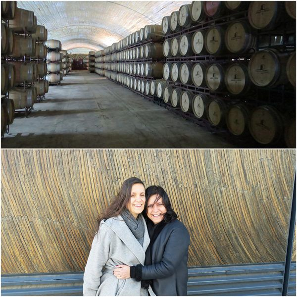 wine tourism portugal herdade do esporao wine tasting tour cellar 2