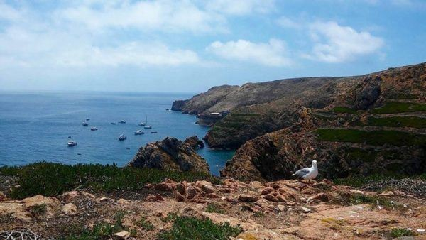 mrs o and friends best of summer berlengas portugal