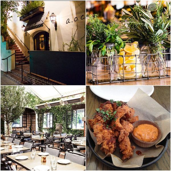 aoc-wine-bar-beverly-hills-california-top-restaurants