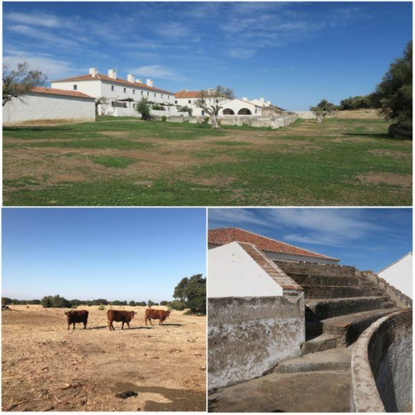 herdade sao lourenco do barrocal monsaraz alentejo portugal luxury hotel slh small luxury hotels of the world estate 1