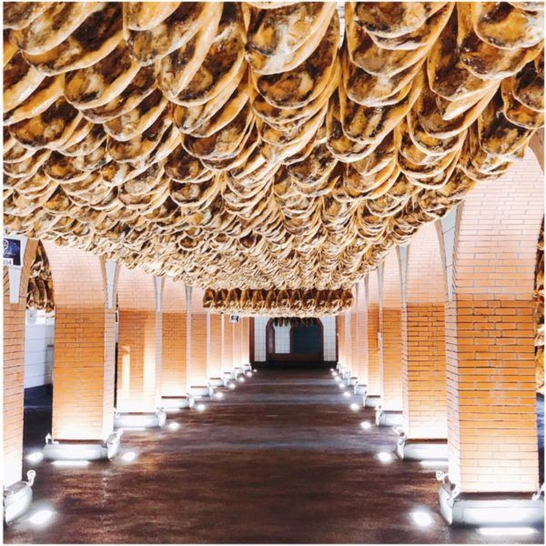 luxury weekend in seville with days out to jerez and jabugo cinco jotas best iberico ham visit jamon iberico de bellota visita 2