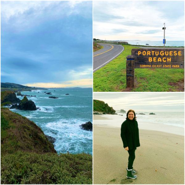 bodega bay pacific ocean portuguese beach sonoma coast state park things to do in sonoma county