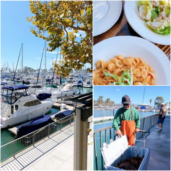 things to do in dana point california watermans restaurant