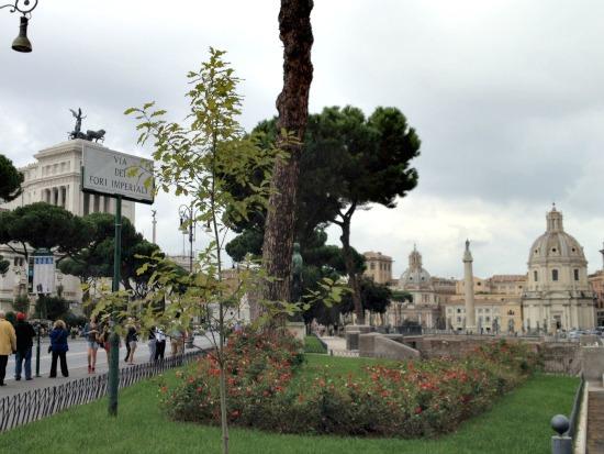 Walking through an open-air museum